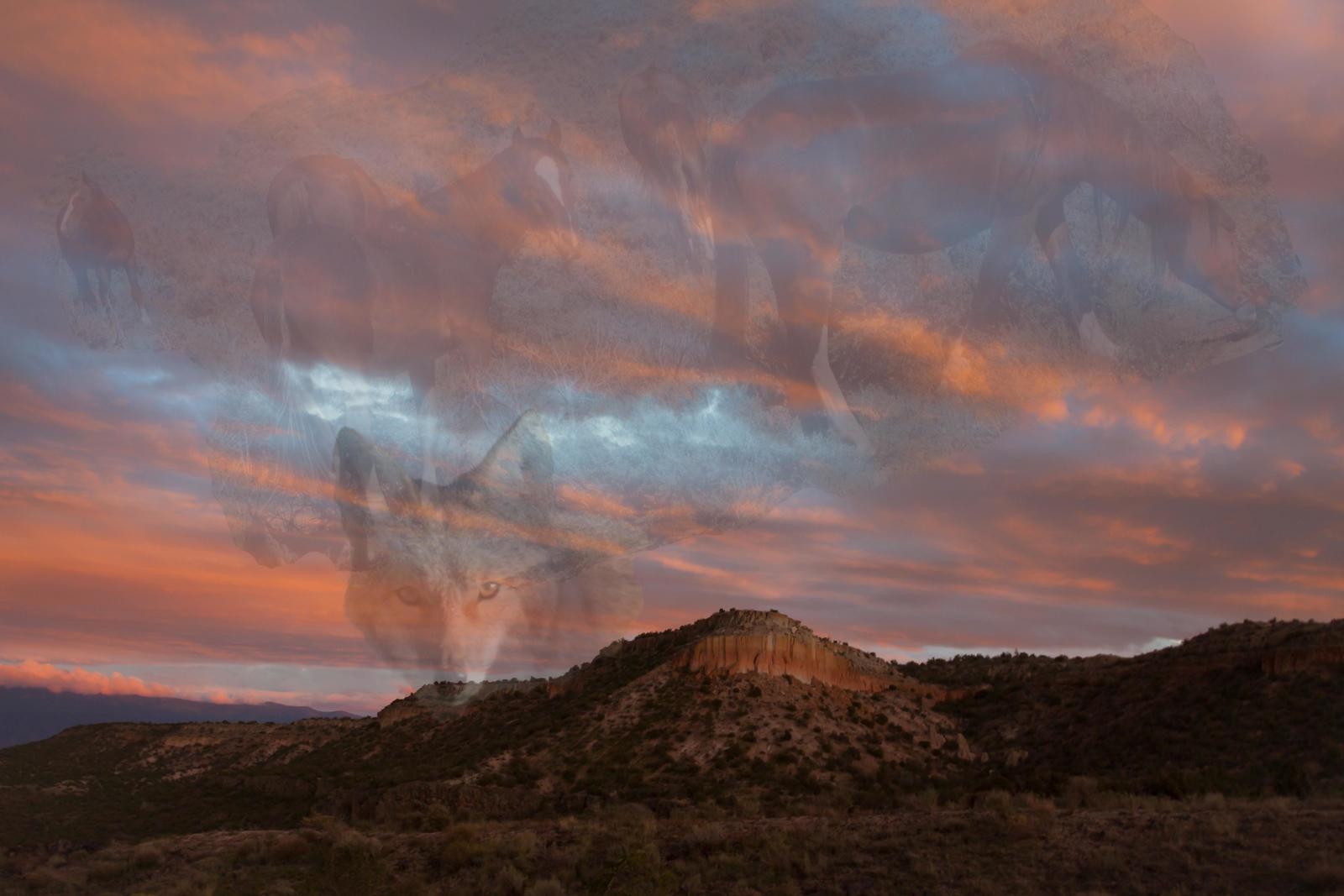 Spirit of New Mexico