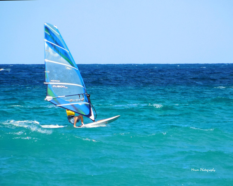 Windsurf20x16