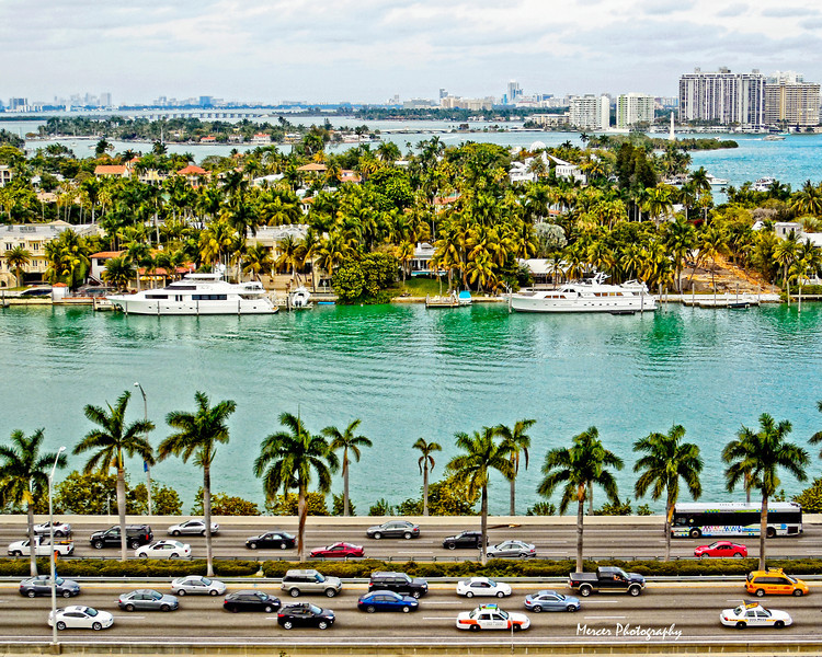 MiamiCars20x16