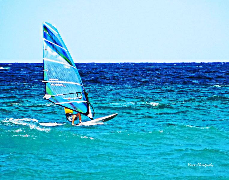 Windsurf14x11D