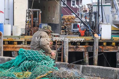 Fishing on Portland dock