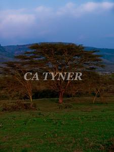 Kigio Wildlife Preserve Kenya