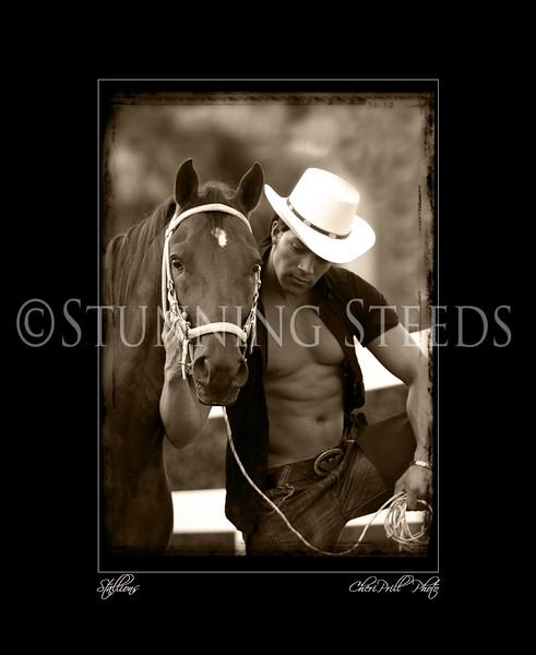 stallions-3