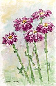 Loose Watercolor Wildflowers