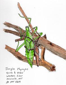 Jungle Nymphs