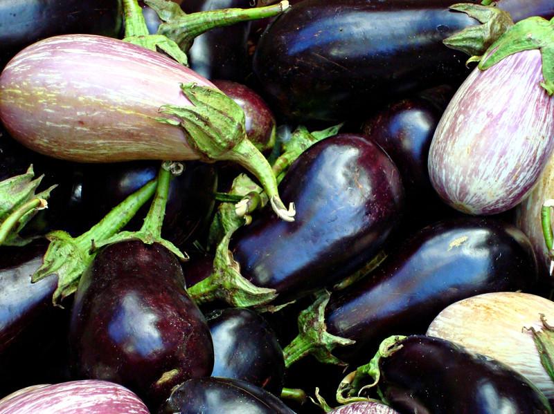 Eggplant Euphoria