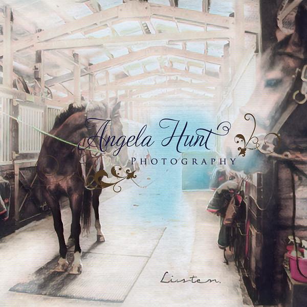 Horse art listen