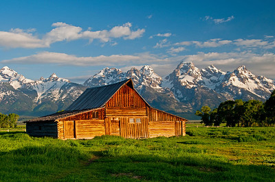 Mormon Row - Teton National Park