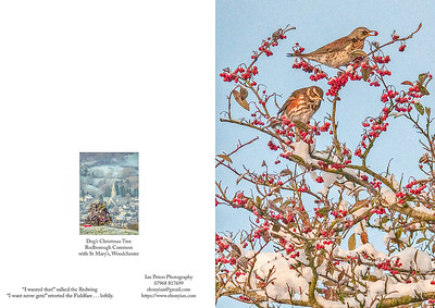 I wanted that sulked the Redwing Portrait with Dog's Chr tree 5  x 7 Template-2.jpg