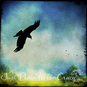 Photo Composite of Raven, flock of birds and background with textures to create a water color effect