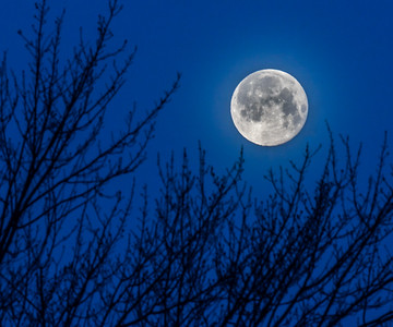 Blue Hour Moon