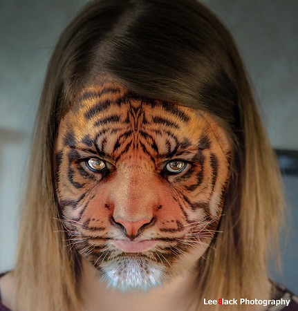 Amy the Tiger
