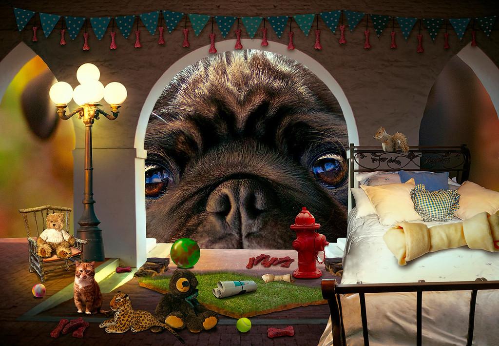 Doggie Dreamhouse