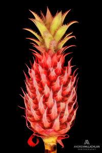 Pineapple Creative Edit