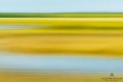 In-camera pan blur at Tiny Marsh Provincial Wildlife Area, Elmvale, Ontario, Canada