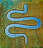 Artistic Rendering of Snake Design
