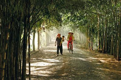 """Vietnam , in the forest, 2008"". 30x45 (50€), 40x60 (100€), 50x75 (180€)"