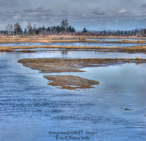 Delta of the Snohomish River