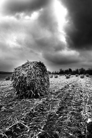 A Series of Bales