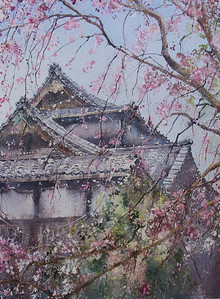 Gabrielle Moulding - Blossoms at Sacred Heart, Hiroo