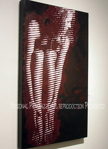 A Leslie n Jeff Cohen Art Gallery0009