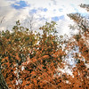 """Reflection"" by Damian, 13  