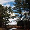 """Calm"" by Anonymous, 15  