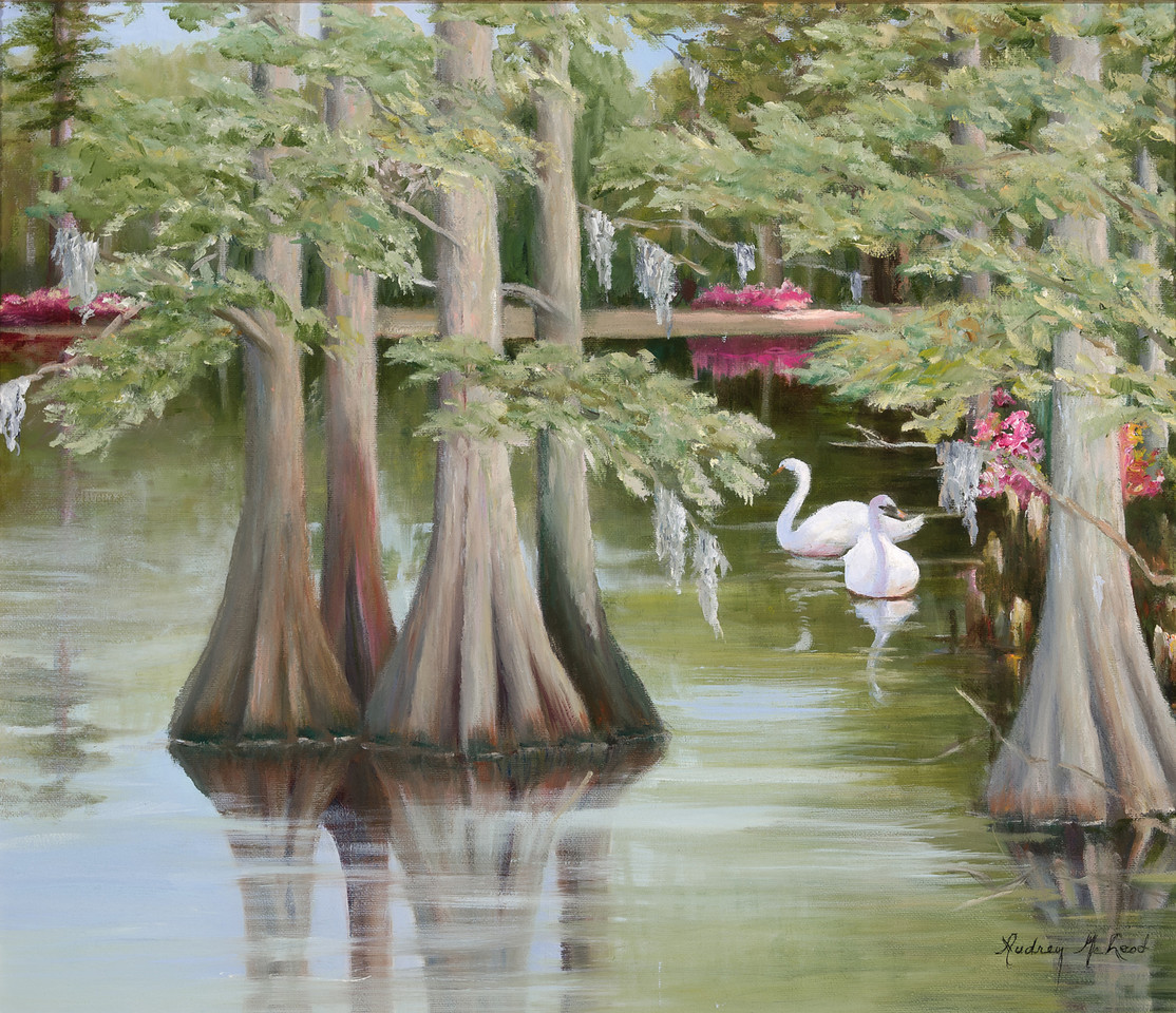 Name: Swan Lake<br /> Medium: Oil<br /> Size: 15x17<br /> Price: $325<br /> Contact: Audrey McLeod<br /> E-Mail: riverartist@aol.com