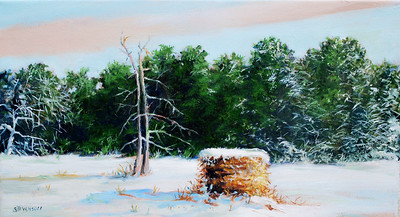 Name of Picture: WINTER HAYBALES SERIES 4 Medium: OIL ON CANVAS Size: 10 X 18 Price: $350.00 Contact: 843-454 6038 E-Mail: dennystevenso@aol.com