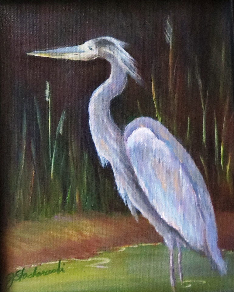 Name: Blue Heron<br /> Medium: Oil <br /> Size: 10 X 8 <br /> Price: $60<br /> Contact: Jackie Stacharowski<br /> E-Mail: Artist Jackie@yahoo.com