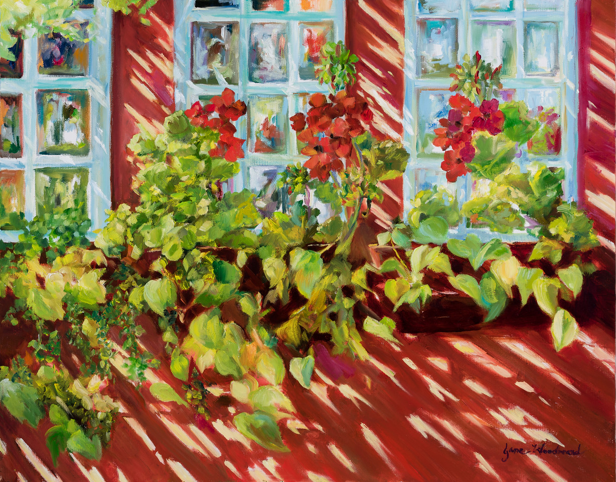 Name: Charleston Window Boxes<br /> Medium: Oil<br /> Size: 22 X 22<br /> Price: $<br /> Contact: Jane Woodward<br /> E-Mail: JaneWoodward@msn.com