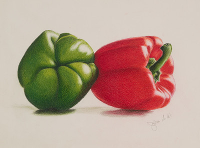 Name: Complimentary Medium: Colored Pencil  Size: 8 1/2 X 11 Price: $ Contact: Jolene Stinson Williams  Email: jolenestinson@yahoo.com  Contact Jolene to purchase prints