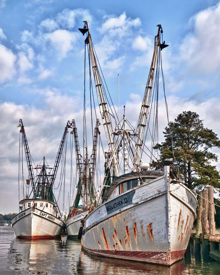 "Name: The Georgetown Fishing Fleet<br /> Medium: Photography<br /> Size: <br /> Price: $<br /> Contact: Mike Covington<br /> E-Mail: mike@lowcountryphotos.com <br /> For a print of this work, go to  <a href=""http://www.lowcountryart.org"">http://www.lowcountryart.org</a>"