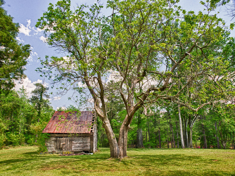 "Name: Aunt Lib's Old Barn<br /> Medium: Photography<br /> Size: <br /> Price: $<br /> Contact: Mike Covington<br /> E-Mail: mike@lowcountryphotos.com <br /> For a print of this work, go to  <a href=""http://www.lowcountryart.org"">http://www.lowcountryart.org</a>"