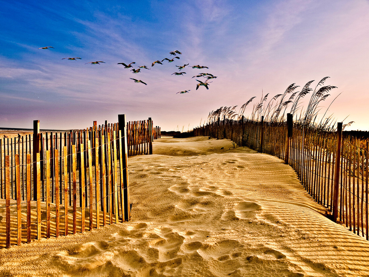 "Name: Pawleys Island Dune Fence<br /> Medium: Photography<br /> Size: <br /> Price: $<br /> Contact: Mike Covington<br /> E-Mail: mike@lowcountryphotos.com For a print of this work, go to  <a href=""http://www.lowcountryart.org"">http://www.lowcountryart.org</a>"