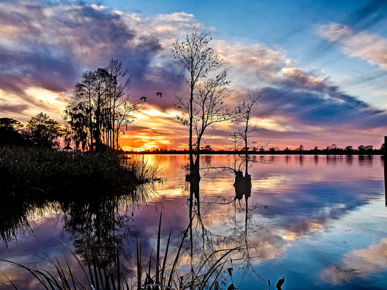 "Name: Band of Colors<br /> Medium: Photography<br /> Size: <br /> Price: $<br /> Contact: Mike Covington<br /> E-Mail: mike@lowcountryphotos.com <br /> For a print of this work, go to  <a href=""http://www.lowcountryart.org"">http://www.lowcountryart.org</a>"