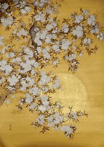 Suiko Ohta - Yae in the bright sunshine  (Double cherry blossoms) 日照の八重
