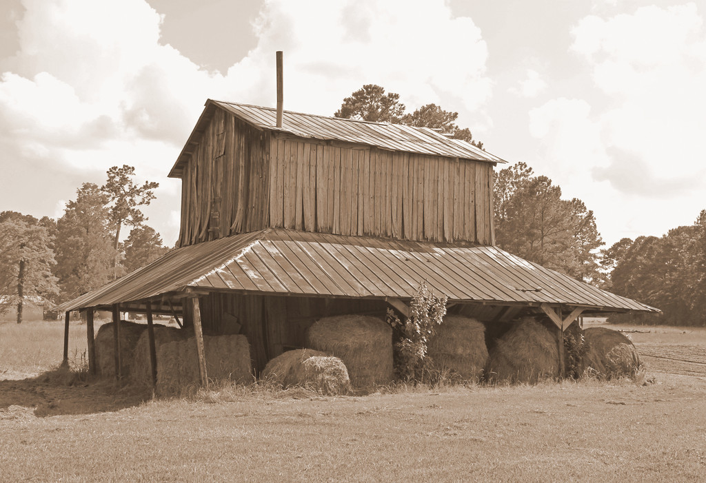 Name: Tobacco Barn - Chadbourn<br /> Medium: Photography<br /> Size:<br /> Price: $<br /> Contact: Suzanne Gaff<br /> E-Mail: sdgaff@sc.rr.com