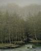 Vu Cong Dien - The End of Autumn