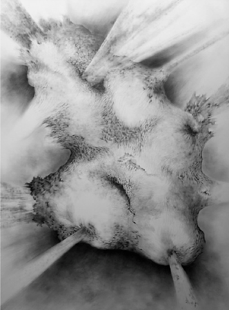 Yim Maline; Scar 3; Graphite on paper; 32 x 44 in ; 2010 - No longer available