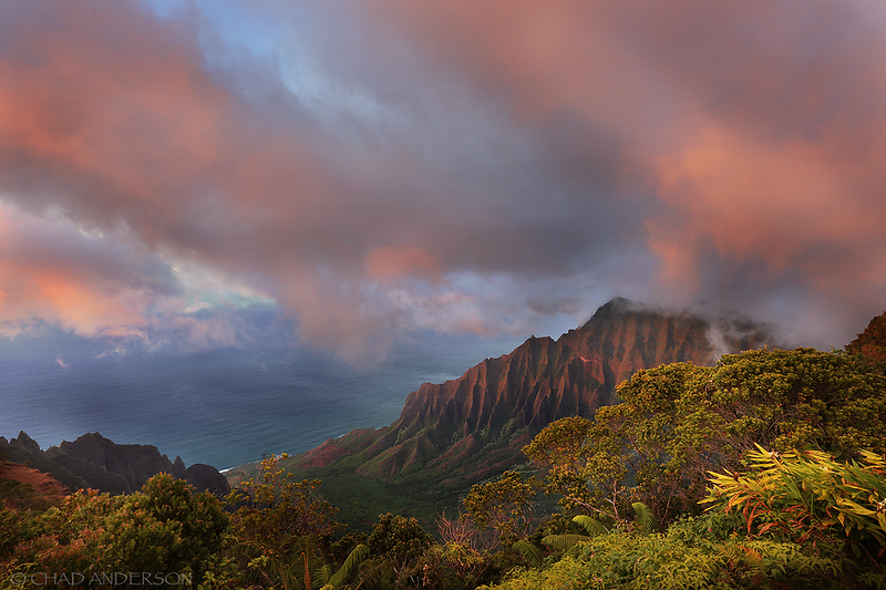 Dreaming of Kauai