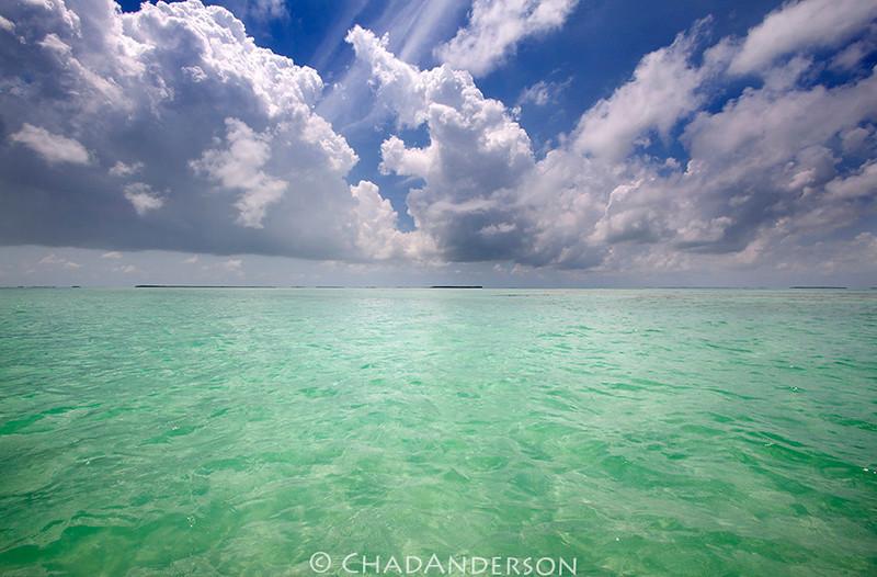 """Endless Summer""<br /> <br /> Taken in the back country of the National Key Deer Refuge in the lower Florida Keys."