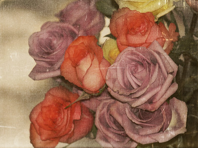 :: weathered roses ::