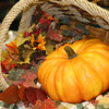 Fall Tablescape_SS0052