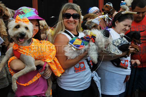 People with dogs dressed in carnivals costume take part in the animals carnival, Copacabana, Brazil, February 3, 2013. (Austral Foto/Renzo Gostoli)