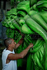 Wagner Oliveira Silva, 39, prepares a float for Sao Clemente samba school in Rio de Janeiro, Brazil, Jan. 28, 2008. The float will be used during the carnival parades which begin on Feb. 02, 2008. Thousands of people work for 6 months out of the year preparing for carnival. (Austral Foto/Renzo Gostoli)