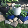 Independent Project - Pyramid Pots