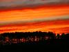 Sunrise Hwy 16 12-2007  (19)