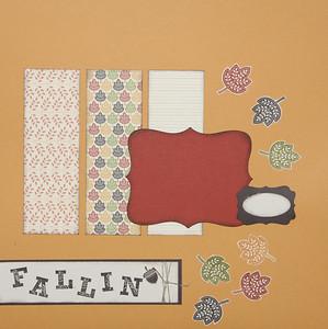 2010-11-18 Fallin Page