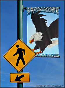 """""DANGER FROM ABOVE"",Wrangell,Alaska,USA."